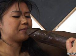 Pono sexo negão bota a asiática safada para provar sua mega pica